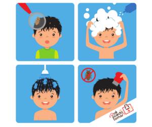 Shampoo para piojos y liendres