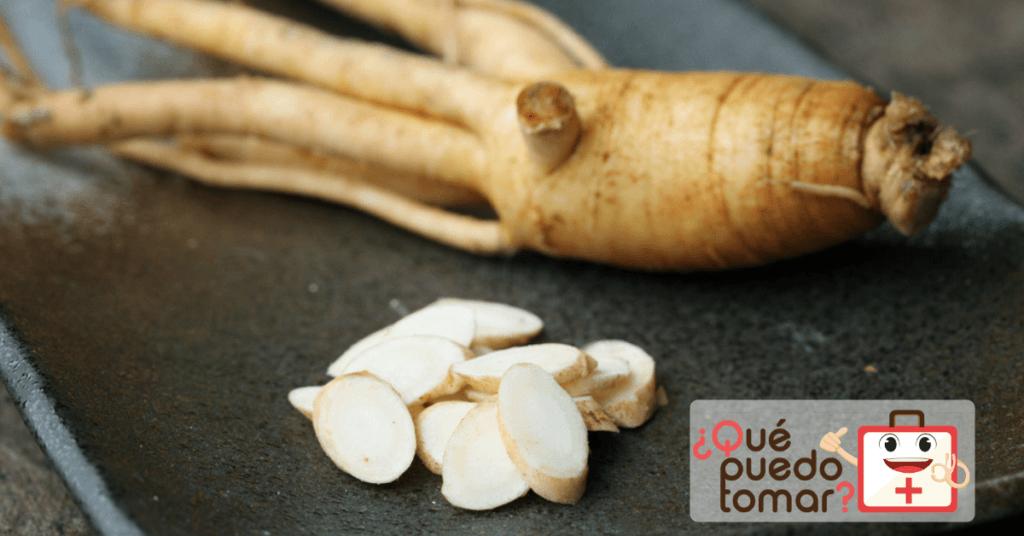 Beneficios De Ginseng Para Tu Salud Qué Puedo Tomar