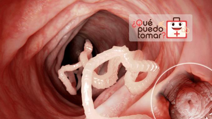 Infecciones estomacales